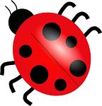 ladybug-24622_150