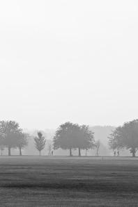 fog-72734_640
